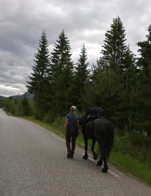 På pilegrimsvandring fra Hamar til Nidaros juni 2012.