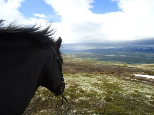 Dovrefjell, fra pilegrimsvandringen Hamar - Nidaros 2012