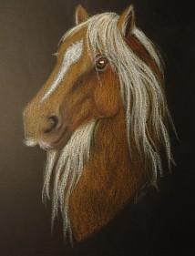Hest med bart. Oljepastell 20x25 cm.