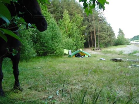 Utkanten av Steinvik camping, Moelv ved Mjøsas bredder