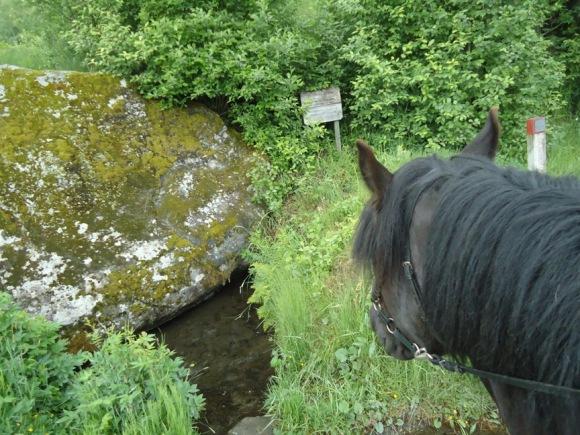 St. Olavskilden ved . Her skal Olav Den Hellige ha latt hesten sin få drikke.