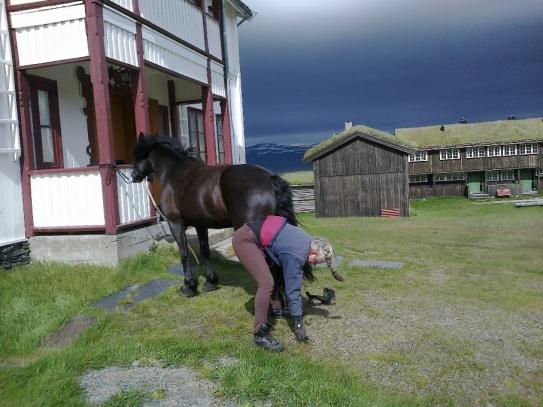 Frøya klargjøres og får på boots før dagens etappe.