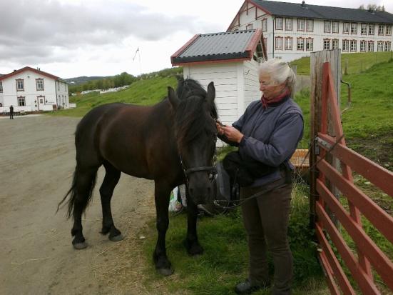 Frøya klargjøres for dagens vandring fra Hjerkinn til Kongsvold.