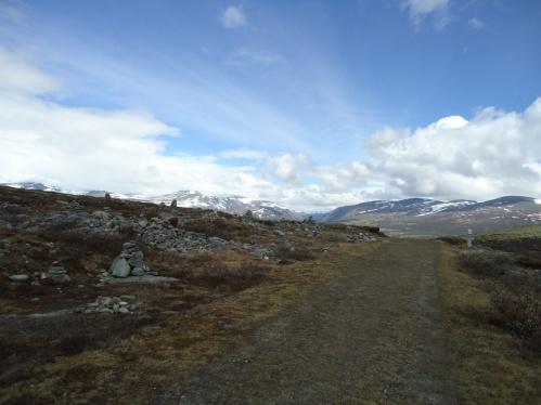 Dovre på vei mot Kongsvoll.