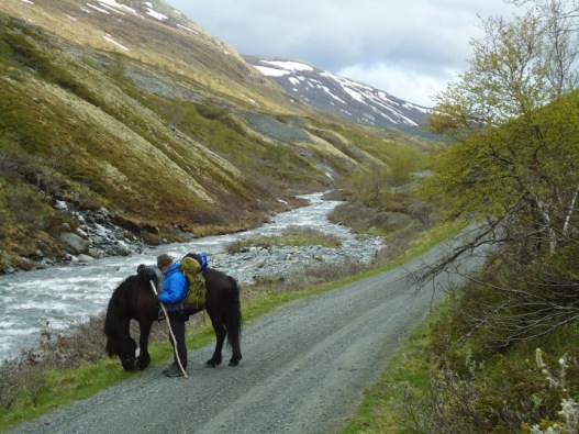 Frøya og Svein på veien nedenfor Ryphusan.