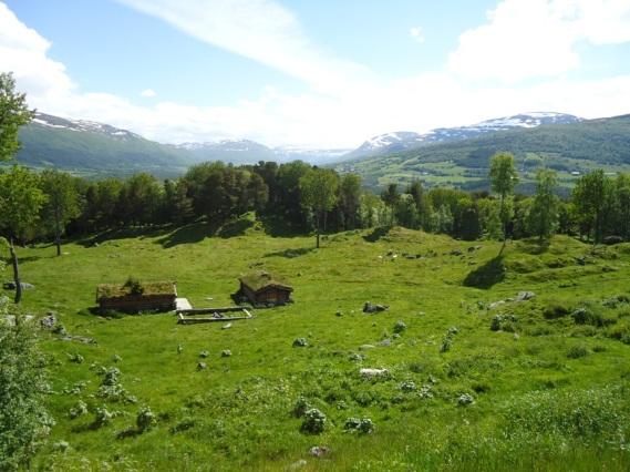 """Utsikt over """"Gammelsykehjemmet"""" og gravfeltet på Vang, Oppdal."""