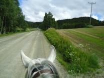 Vi har tatt av fra 501 og er på vei mot Storbuan gård.