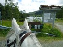 På vei forbi Frilsjøen mot Storbuan gård.