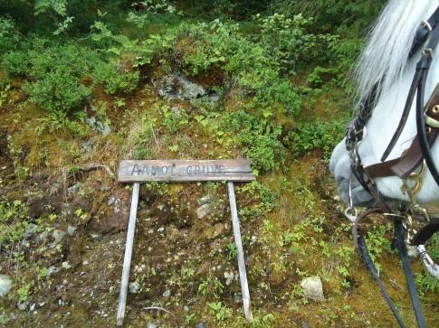 Ved Aamot gruve, på vei til Svorkmo.