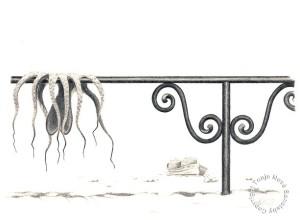 """""""Blekksprut til tørk på Gresk strand"""". Blyant, 1989."""