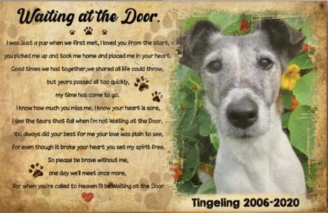 In memory of Tingeling